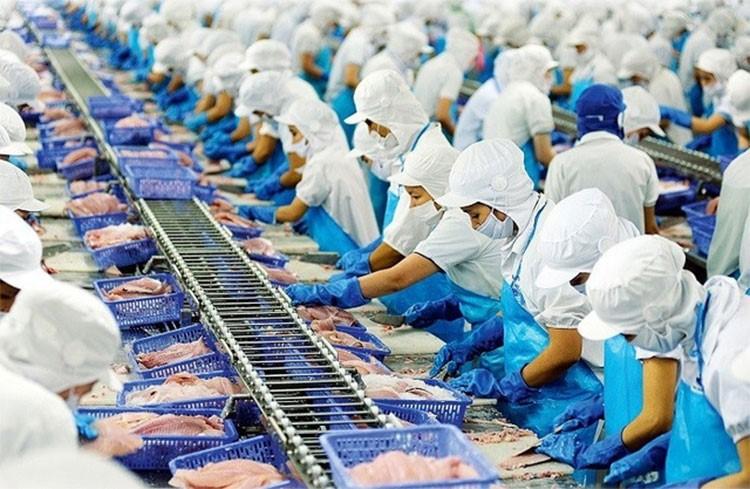 Xuất khẩu thủy sản: Tăng trưởng ấn tượng
